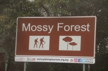 Sign at Mossy Forest